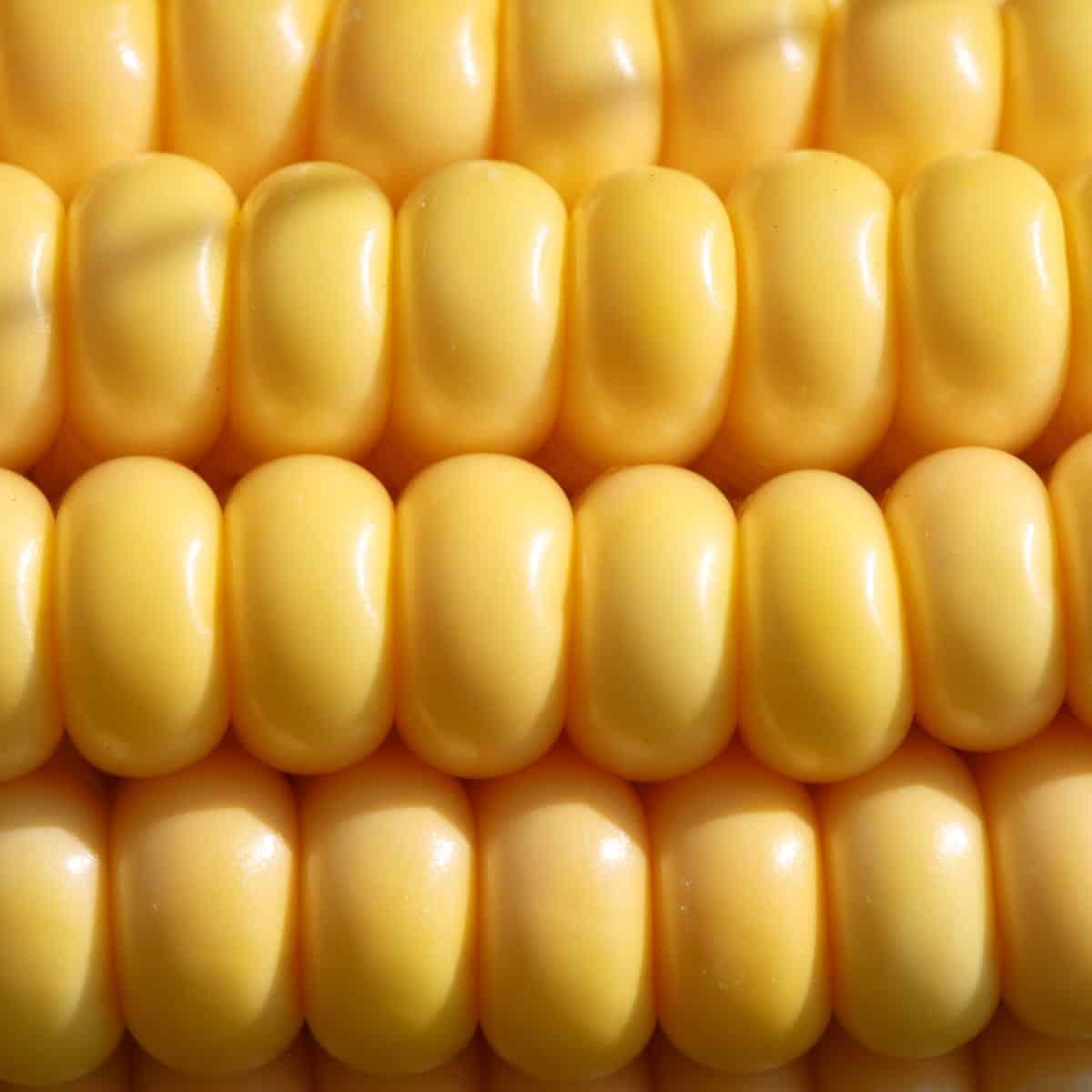 """Non GMO"""