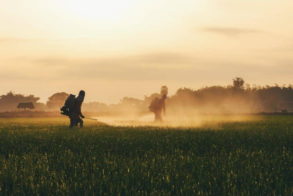 Pesticide Report
