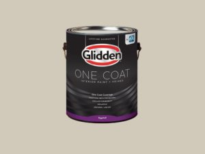 Glidden One Coat Primer and Paint