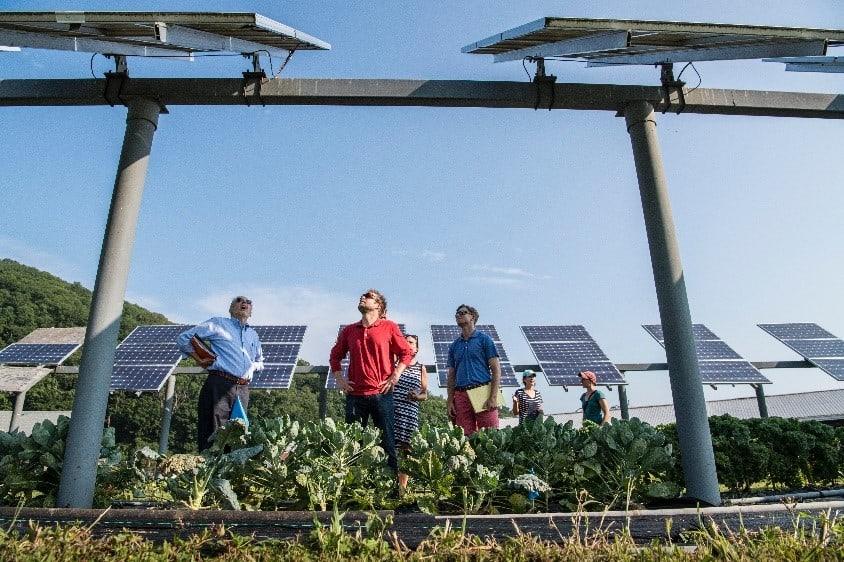 Solar Company Team